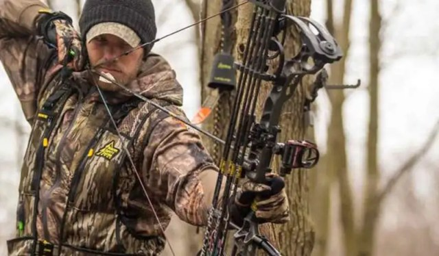 Always Wear a Tree Stand Safety Harness