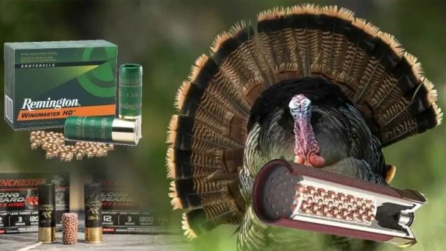 Bagging Birds – The 5 Best Turkey Hunting Loads for Shotguns