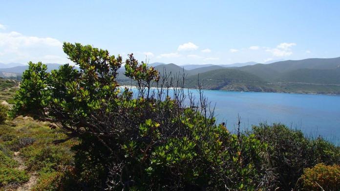Küstenwanderweg Korsika