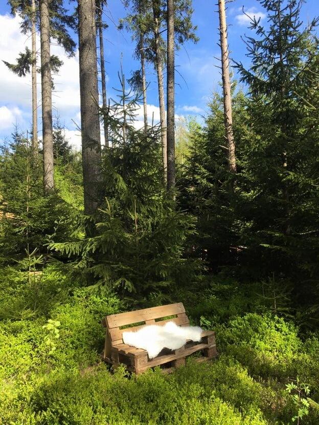schwarzwaldcamp-3