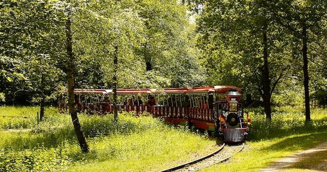 Wild und Freizeitpark Allensbach