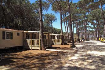 Campingpark Albatros5