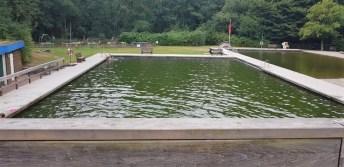 Aquadies egestorf