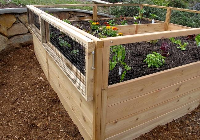 Raised Vegetable Garden Kit Uk