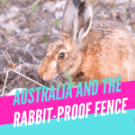 Australia and the Rabbit Proof Fence - Outdoor Lyf