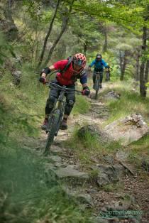 Flowiger Trail