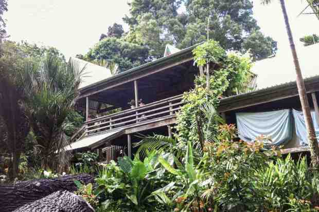 The Tree House Camping und Hostel Neuseeland Northland