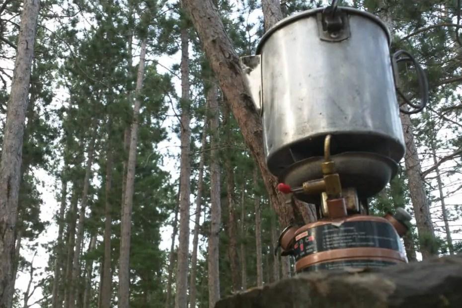 Coffee Trail Trees Quetico Lakes