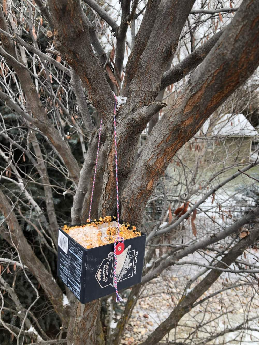 homemade bird feeder made from a recycled box hanging from a tree