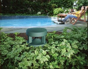 bose freespace 51 outdoor speakers