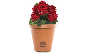 best planter speaker for patio