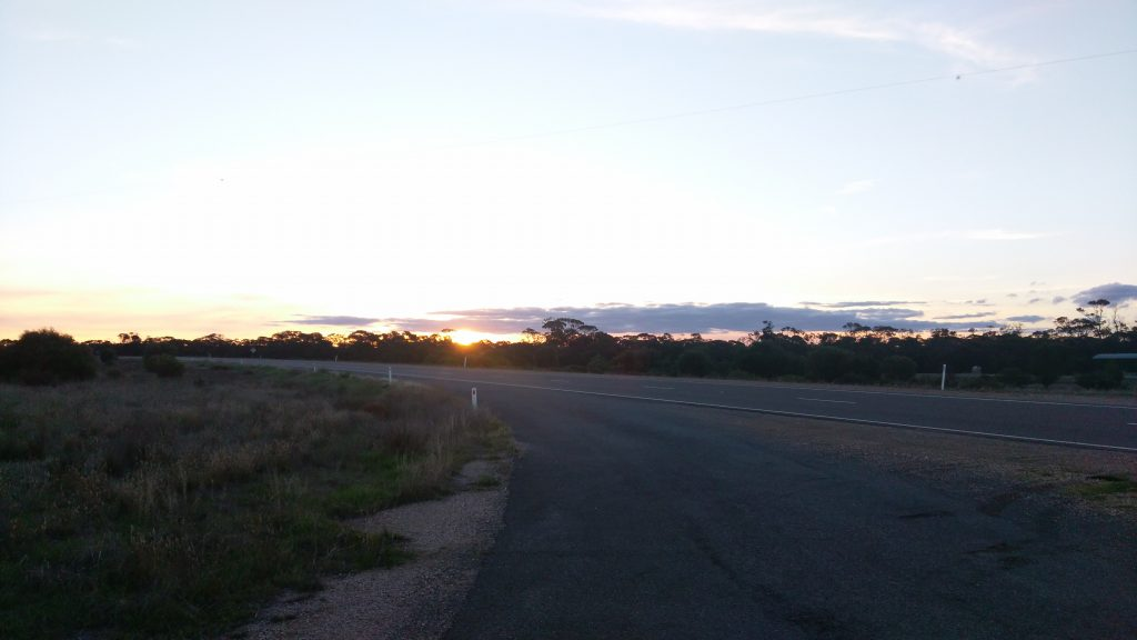 Rest area in the Mallee