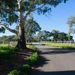 Driveway---Yurrebilla-trail-entrance---Eagle-on-the-Hill