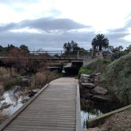 Dry Creek Trail at Greenfields Wetlands
