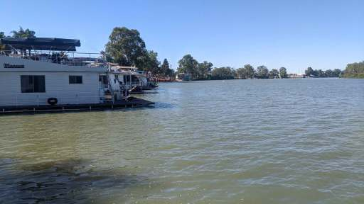 View from the back deck of a houseboat along the river at Renmark