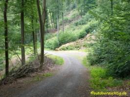 Wieder durch den Wald