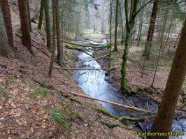 Waldschluchtenweg - 008