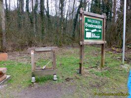 Waldschluchtenweg - 016