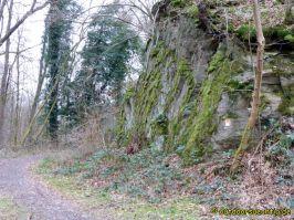 Waldschluchtenweg - 020