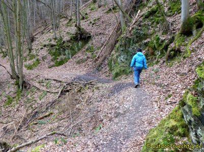 Waldschluchtenweg - 025