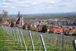 Blick in den Odenwald