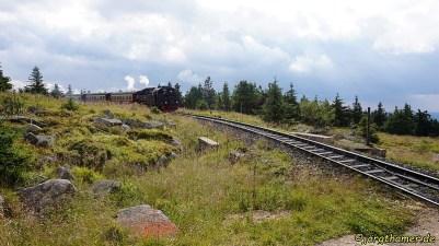24trophy Wernigerode -- 0099