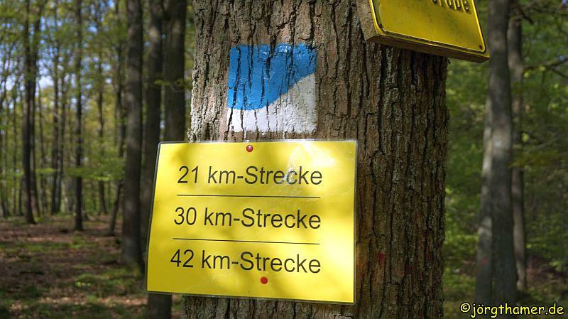 7. Wandermarathon rund um den Donnersberg