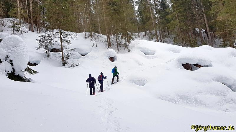 Schneeschuhwandern im GWunderwald Davos
