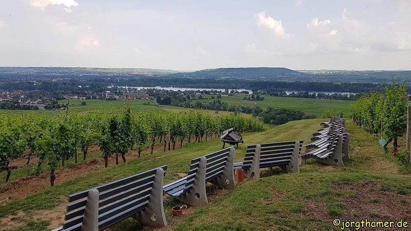 Goetheblick Johannisberg