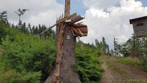 Sturmschaden Klostersteig