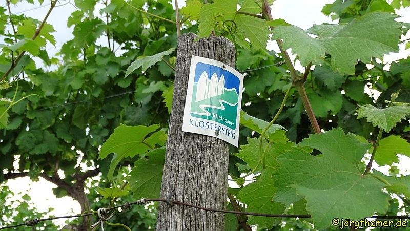 Pilgern auf dem Rheingauer Klostersteig