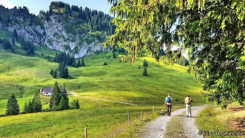 Alpe mit Beslerkopf