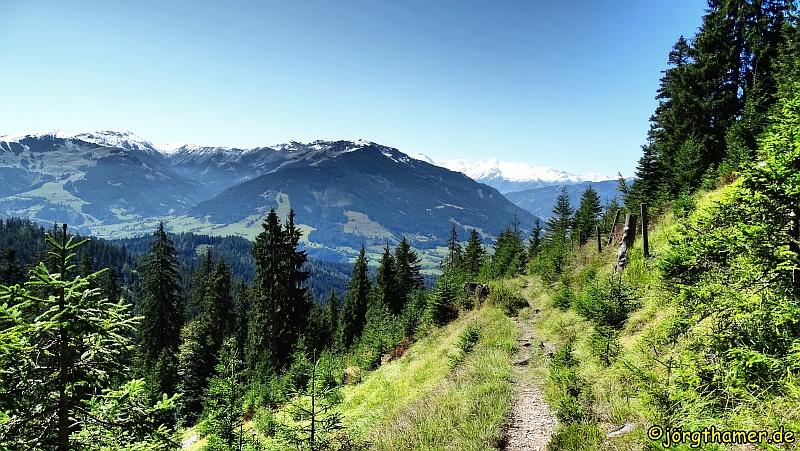 Panoramaweg Saalfelden mit Glocknergruppe