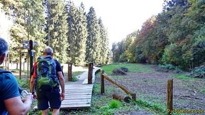 0064 Mullerthal Trail Tag 2 DSC01265_JPG