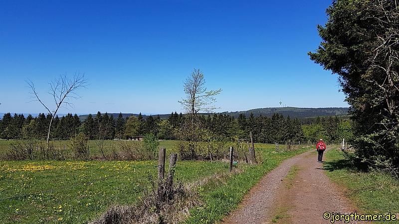 Idylle am Bergmähwiesenpfad