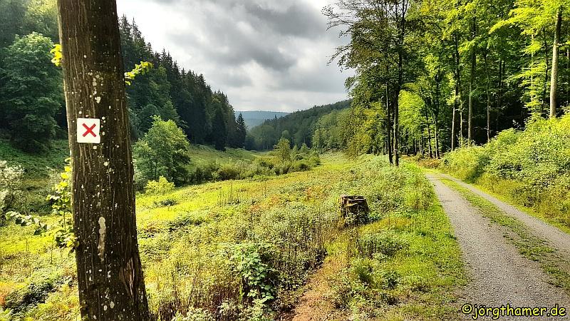 Wandern in Deutschland  - cover
