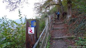 Wandern im Mittelrheintal