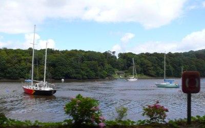 Owenabue river