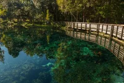 Crystal Springs Turquoise Water