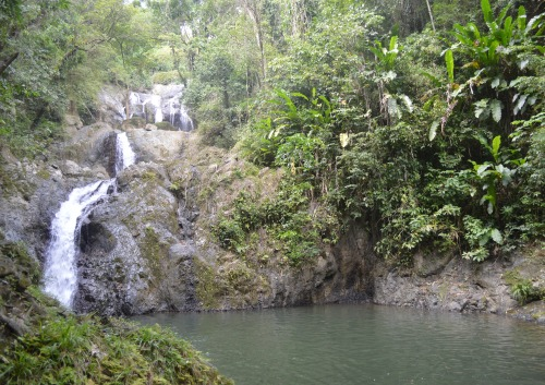 waterfall tobago