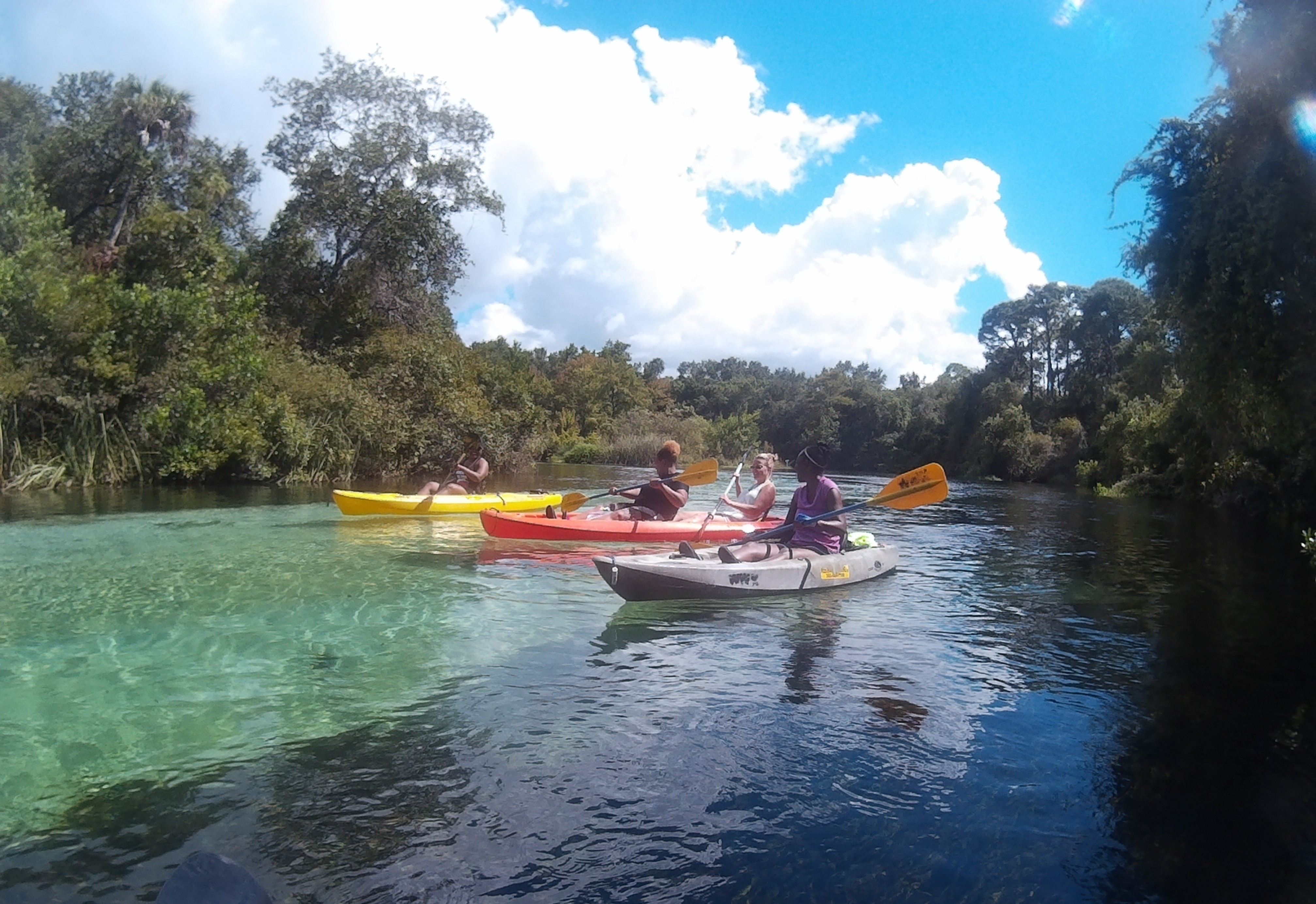 Weeki Wachee River Best Place To Kayak In Florida