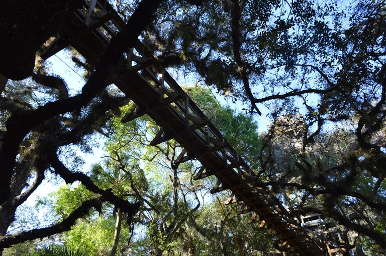 myakka canopy walkway myakka river state park