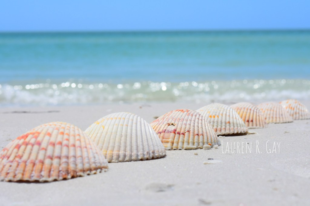 quiet secluded beaches in florida