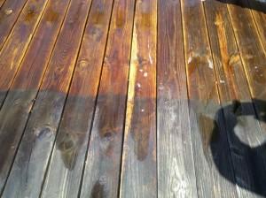 Deck Staining Nashville