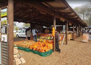 outeniqua family market