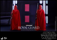 Hot-Toys-Star-Wars-Royal-Guard-009