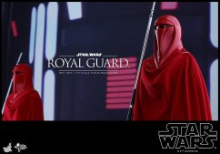 Hot-Toys-Star-Wars-Royal-Guard-010