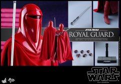 Hot-Toys-Star-Wars-Royal-Guard-018