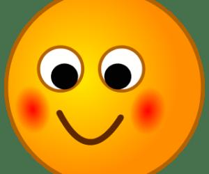 Shy Smiley <i>Credit: Chris, http://commons.wikimedia.org/wiki/User:Chrkl </i>