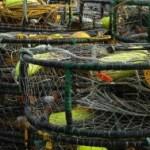 Crab pot corrosion control